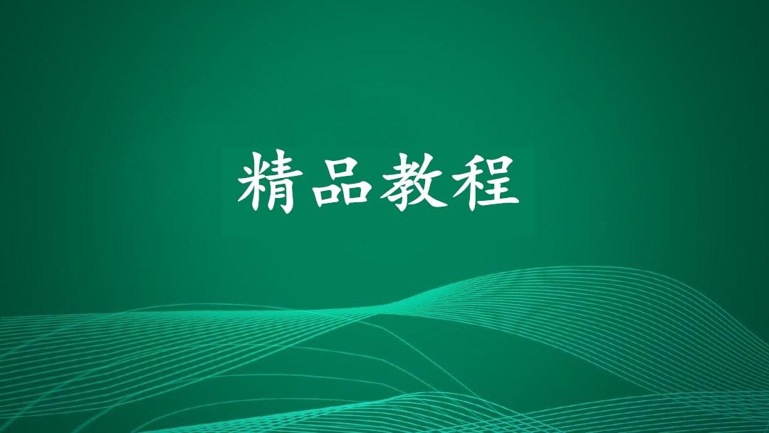 最新国外lead日赚500刀暴力项目,视频+操作(26课)